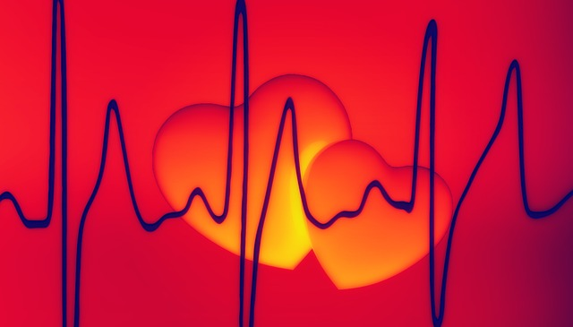 heart-799138_640